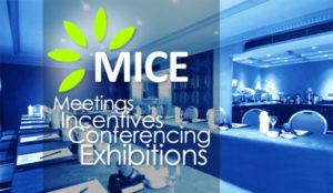 Organizza la tua conferenza con noi.